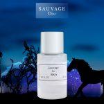 مردانه دیور ساواج Dior Sauvage 3